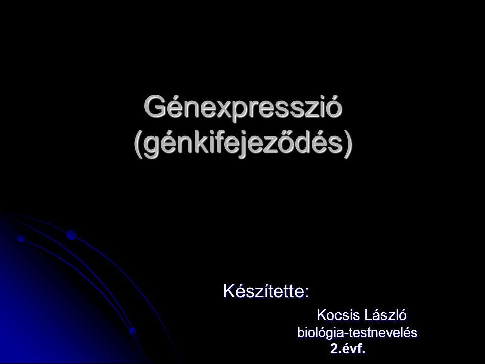 Génexpresszió (génkifejeződés) Készítette: Kocsis László Kocsis László biológia-testnevelés biológia-testnevelés 2.évf. 2.évf.