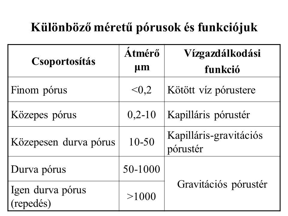Különböző méretű pórusok és funkciójuk Csoportosítás Átmérő μm Vízgazdálkodási funkció Finom pórus<0,2Kötött víz pórustere Közepes pórus0,2-10Kapilláris pórustér Közepesen durva pórus10-50 Kapilláris-gravitációs pórustér Durva pórus50-1000 Gravitációs pórustér Igen durva pórus (repedés) >1000