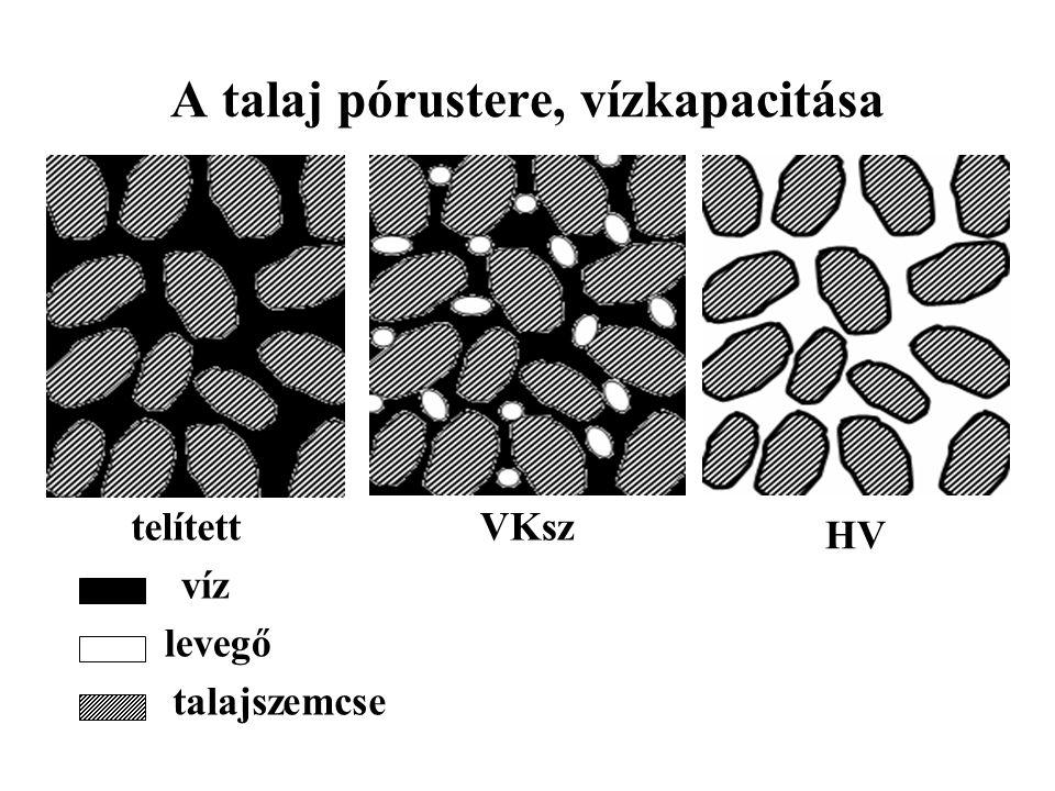 A talaj pórustere, vízkapacitása telítettVKsz HV víz levegő talajszemcse