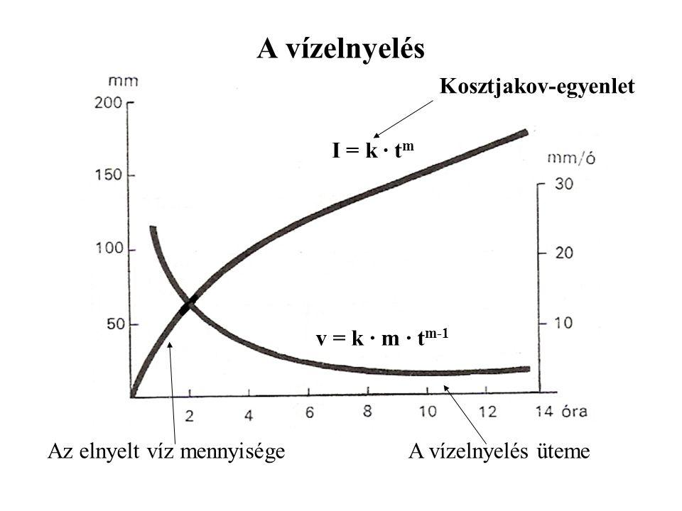 A vízelnyelés Az elnyelt víz mennyiségeA vízelnyelés üteme I = k · t m v = k · m · t m-1 Kosztjakov-egyenlet