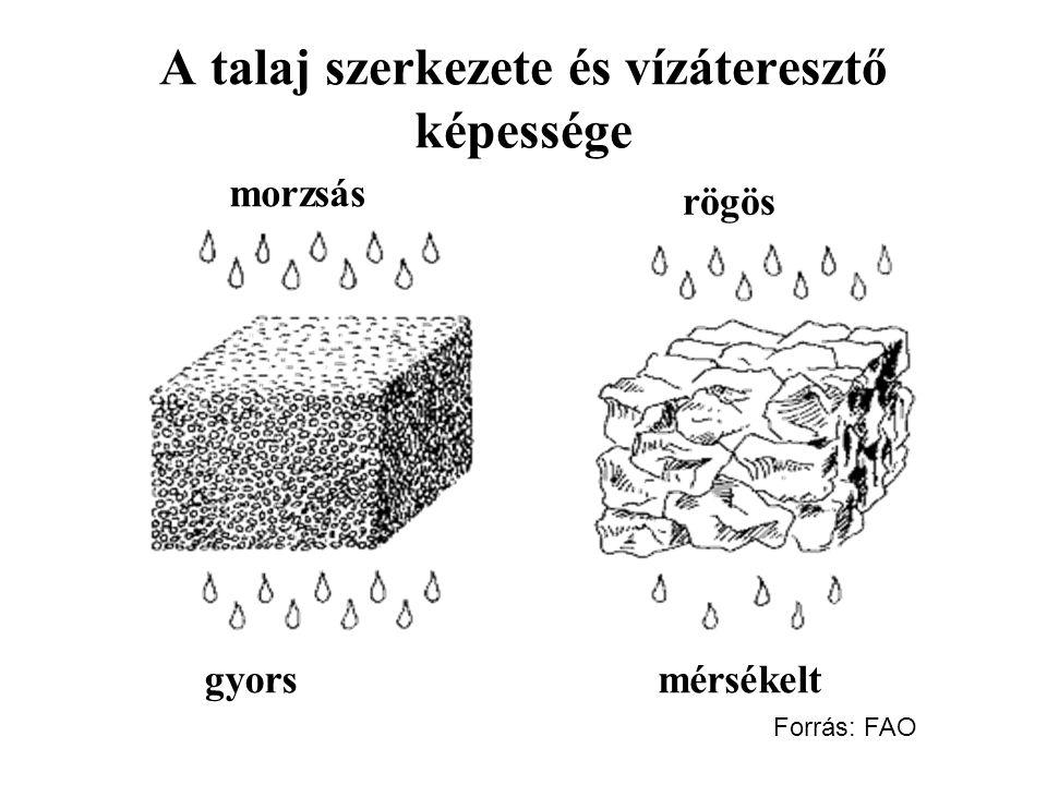 A talaj szerkezete és vízáteresztő képessége gyorsmérsékelt rögös morzsás Forrás: FAO