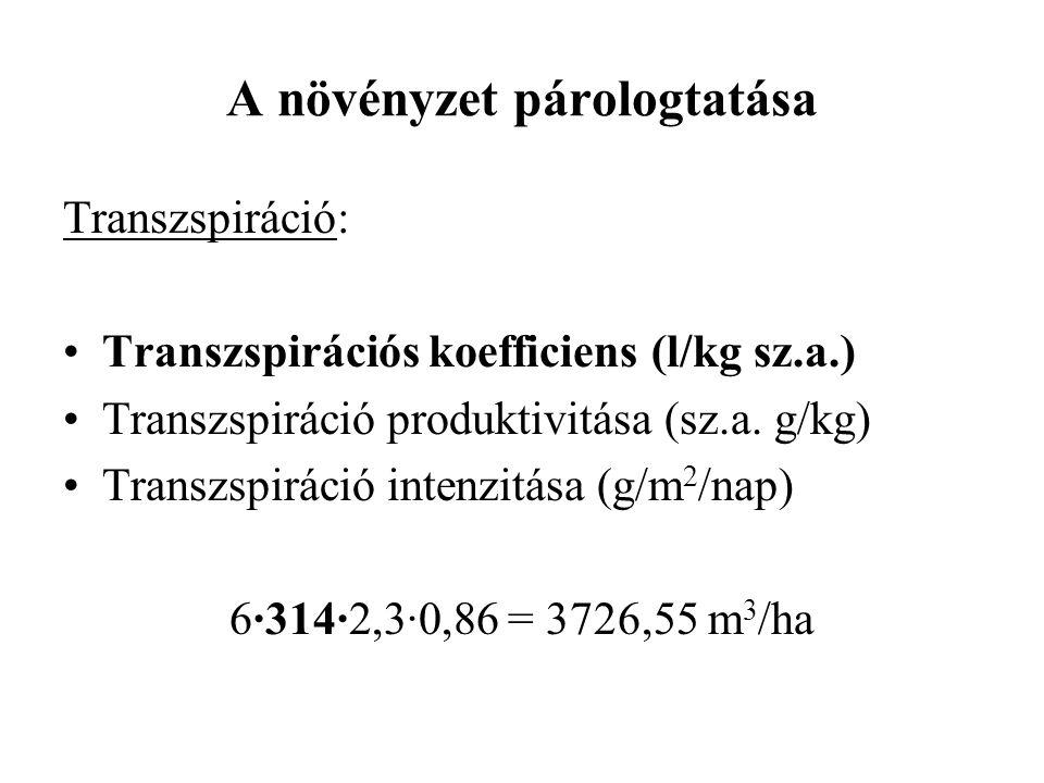 A növényzet párologtatása Transzspiráció: Transzspirációs koefficiens (l/kg sz.a.) Transzspiráció produktivitása (sz.a. g/kg) Transzspiráció intenzitá