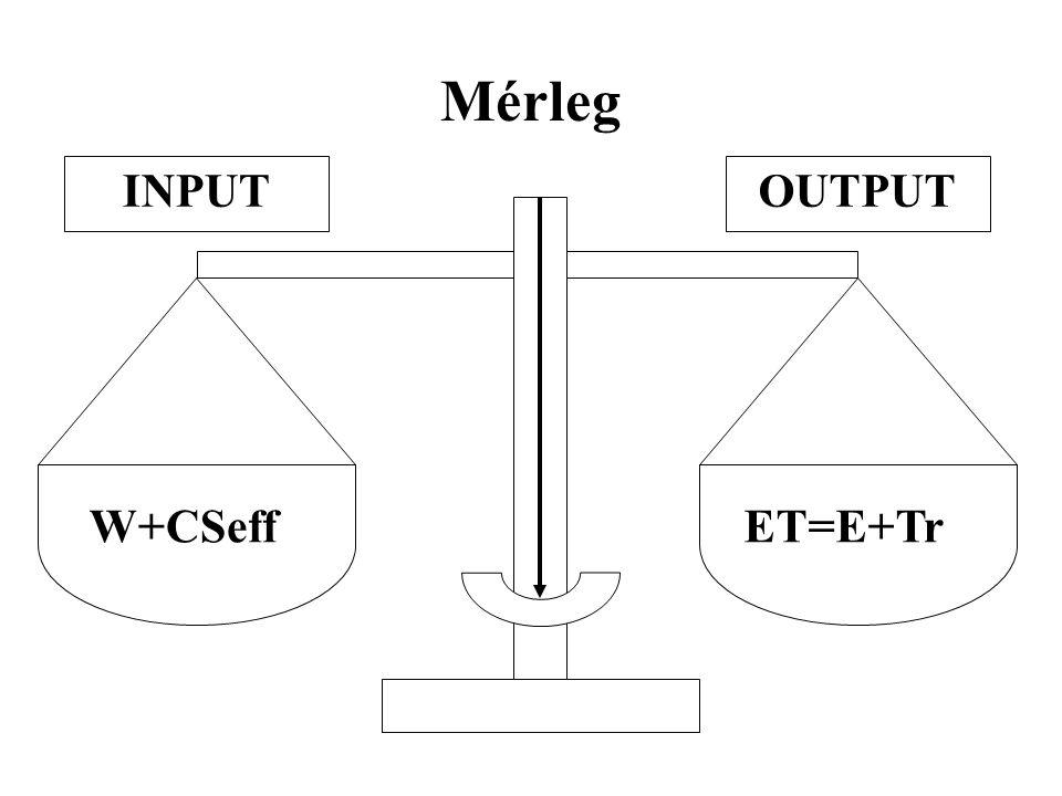 Mérleg ET=E+Tr W+CSeff OUTPUTINPUT