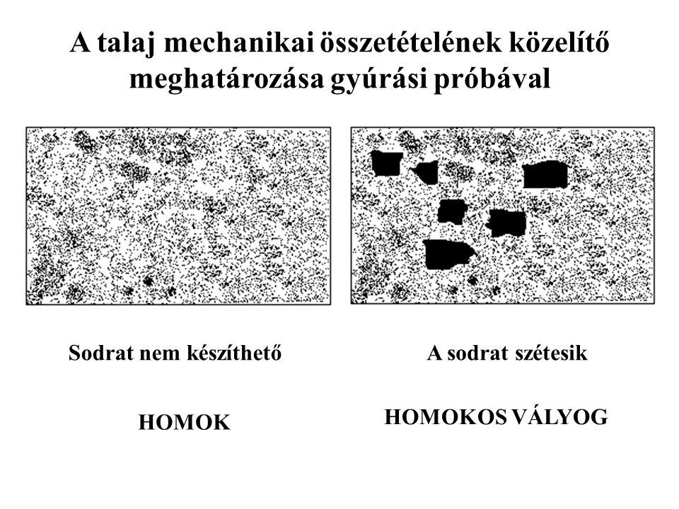 A talaj mechanikai összetételének közelítő meghatározása gyúrási próbával Sodrat nem készíthetőA sodrat szétesik HOMOK HOMOKOS VÁLYOG