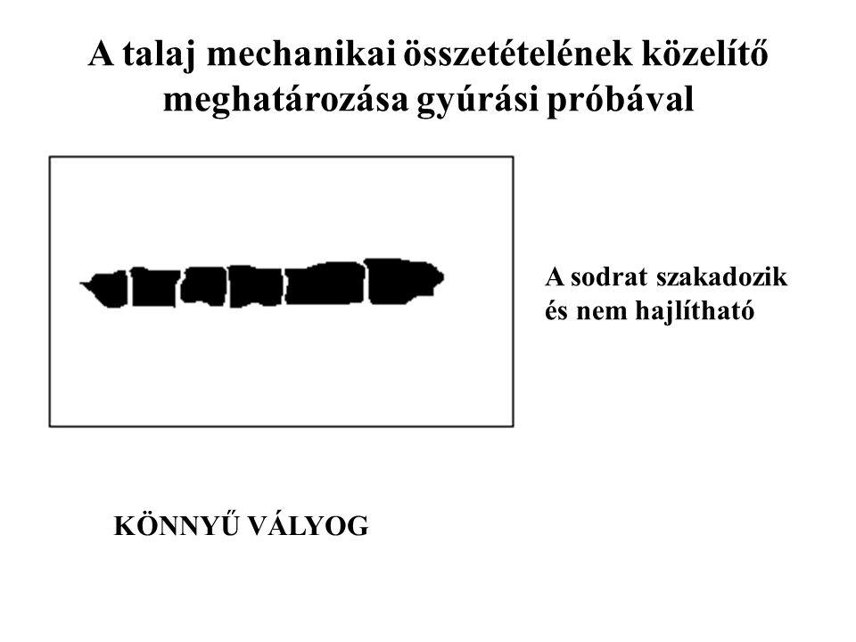 A talaj mechanikai összetételének közelítő meghatározása gyúrási próbával A sodrat szakadozik és nem hajlítható KÖNNYŰ VÁLYOG