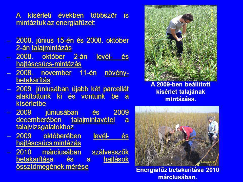 A kísérleti években többször is mintáztuk az energiafűzet: – 2008. június 15-én és 2008. október 2-án talajmintázás – 2008. október 2-án levél- és haj