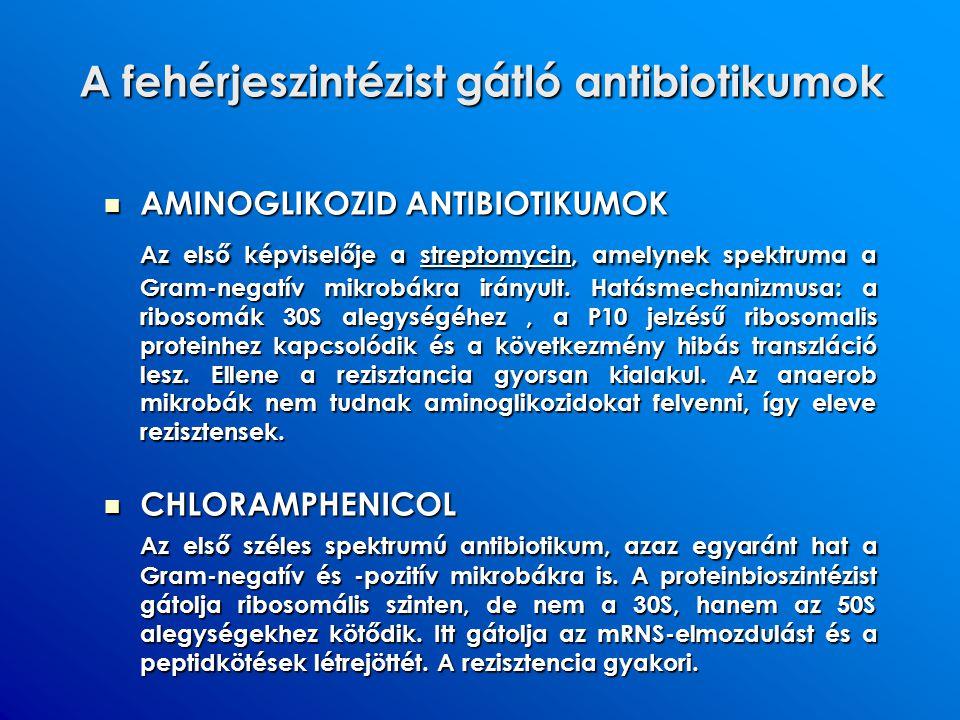 A fehérjeszintézist gátló antibiotikumok AMINOGLIKOZID ANTIBIOTIKUMOK AMINOGLIKOZID ANTIBIOTIKUMOK Az első képviselője a streptomycin, amelynek spektr