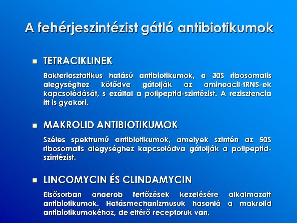 A fehérjeszintézist gátló antibiotikumok TETRACIKLINEK TETRACIKLINEK Bakteriosztatikus hatású antibiotikumok, a 30S ribosomalis alegységhez kötődve gá