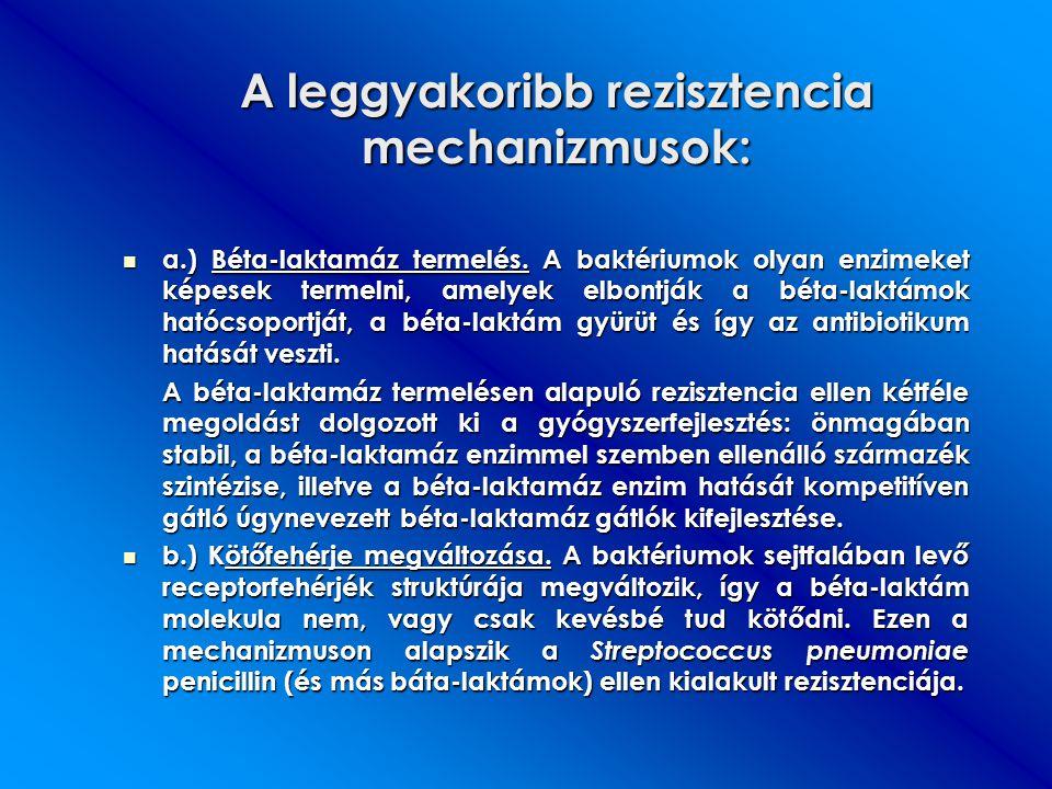 A leggyakoribb rezisztencia mechanizmusok: a.) Béta-laktamáz termelés. A baktériumok olyan enzimeket képesek termelni, amelyek elbontják a béta-laktám