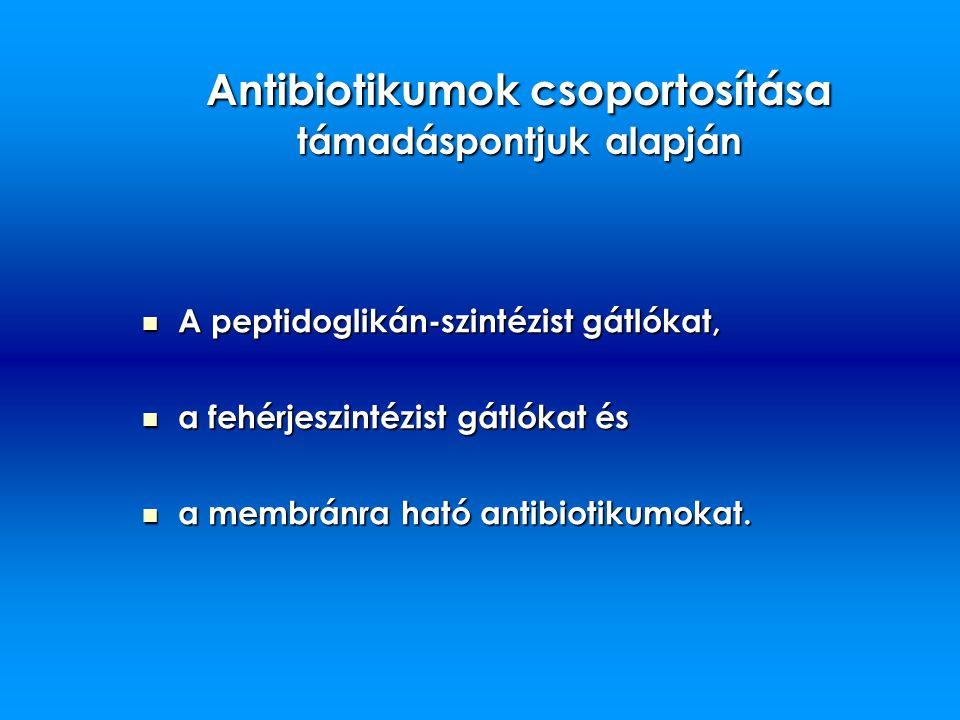 Antibiotikumok csoportosítása támadáspontjuk alapján A peptidoglikán-szintézist gátlókat, A peptidoglikán-szintézist gátlókat, a fehérjeszintézist gát