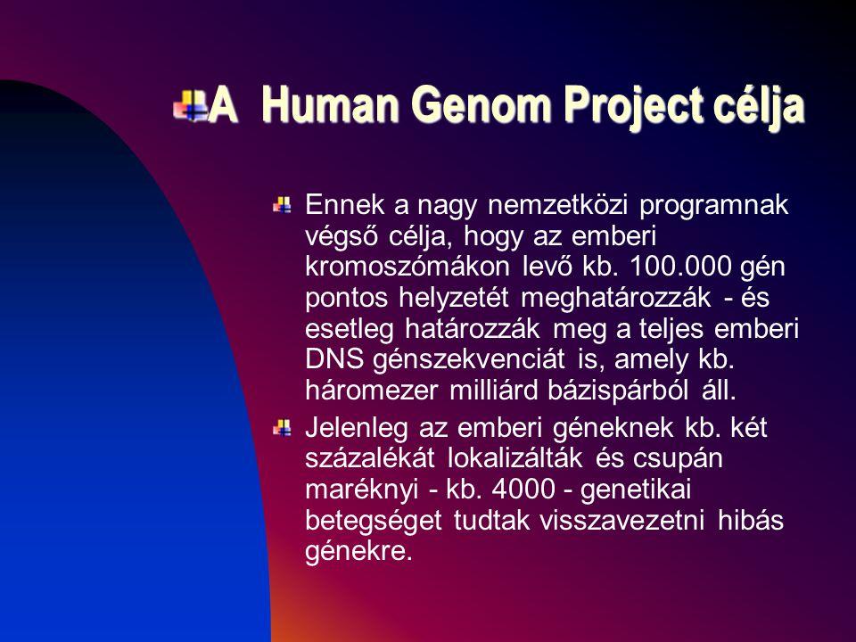 A Human Genom Project célja Ennek a nagy nemzetközi programnak végső célja, hogy az emberi kromoszómákon levő kb.