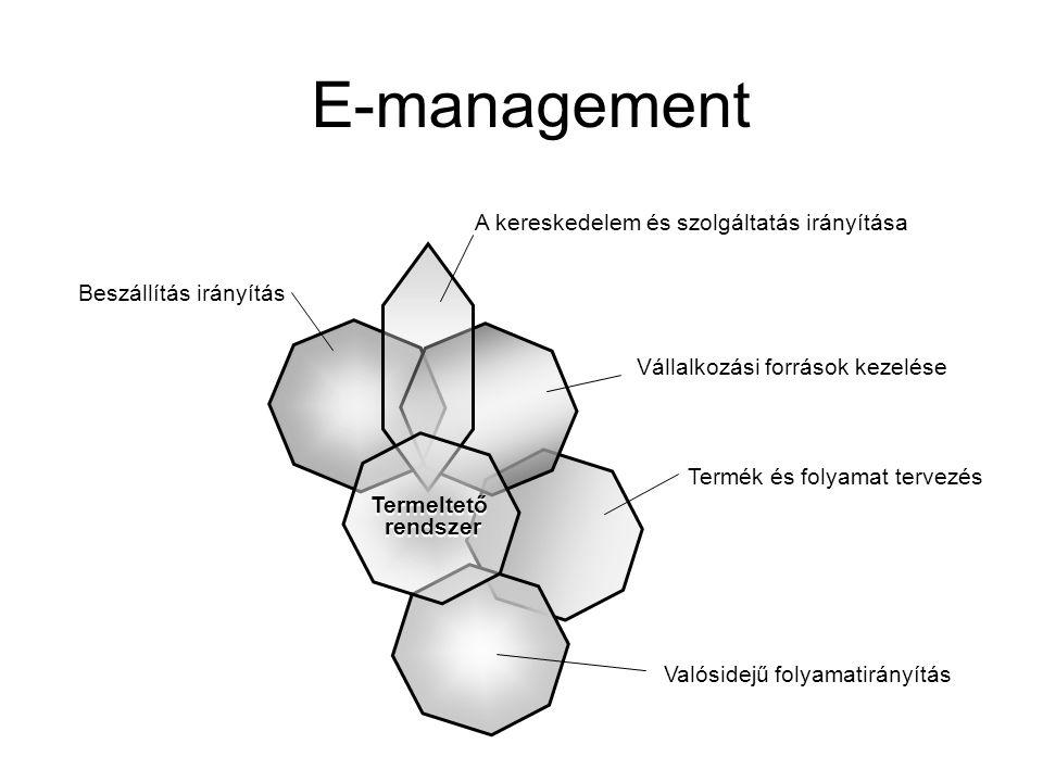 Termék és folyamat tervezés E-management Beszállítás irányítás Vállalkozási források kezelése A kereskedelem és szolgáltatás irányítása Valósidejű folyamatirányítás Termeltető rendszer Termeltető rendszer