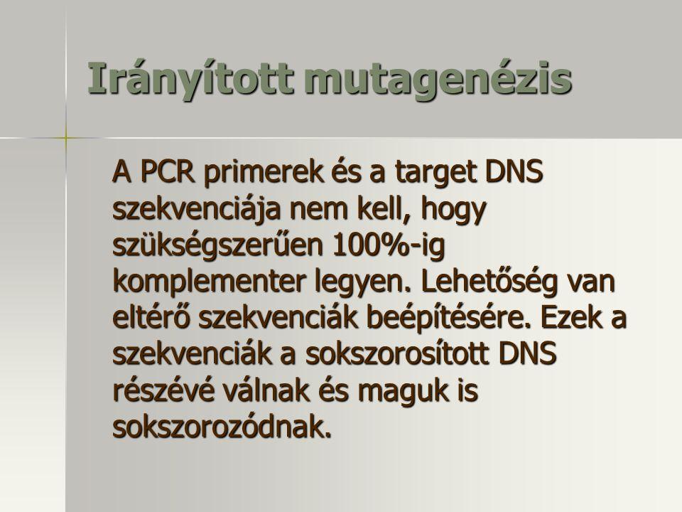 Irányított mutagenézis A PCR primerek és a target DNS szekvenciája nem kell, hogy szükségszerűen 100%-ig komplementer legyen. Lehetőség van eltérő sze