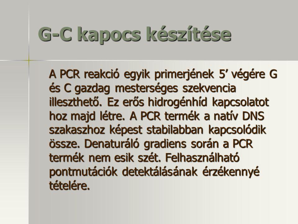 G-C kapocs készítése A PCR reakció egyik primerjének 5' végére G és C gazdag mesterséges szekvencia illeszthető. Ez erős hidrogénhíd kapcsolatot hoz m