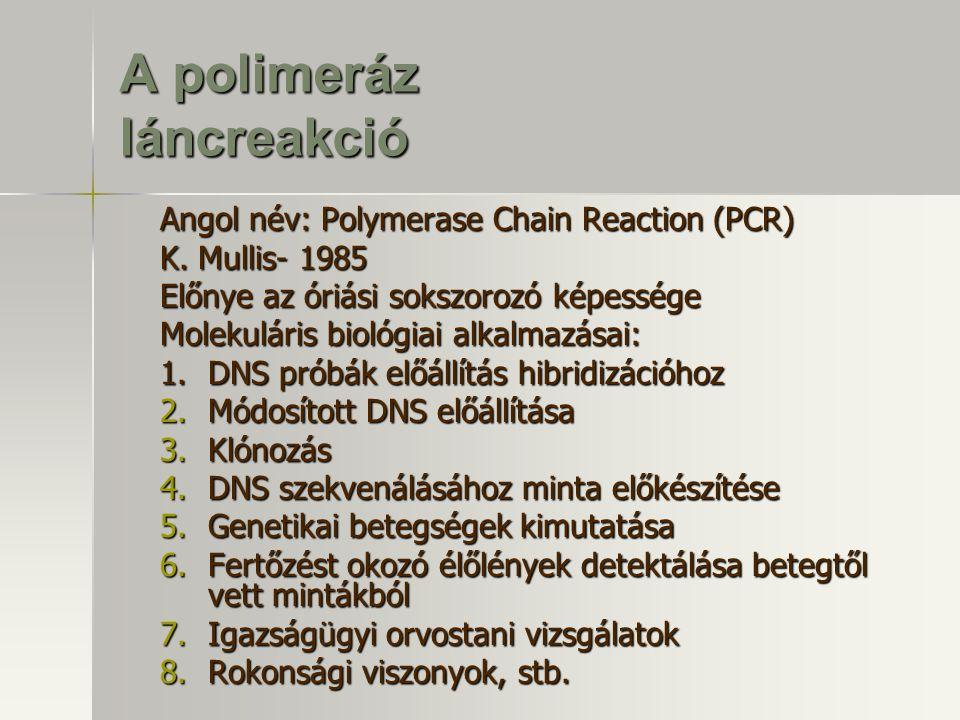 A polimeráz láncreakció Angol név: Polymerase Chain Reaction (PCR) K. Mullis- 1985 Előnye az óriási sokszorozó képessége Molekuláris biológiai alkalma