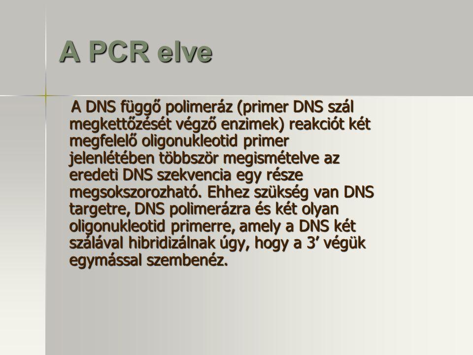 A PCR elve A DNS függő polimeráz (primer DNS szál megkettőzését végző enzimek) reakciót két megfelelő oligonukleotid primer jelenlétében többször megi