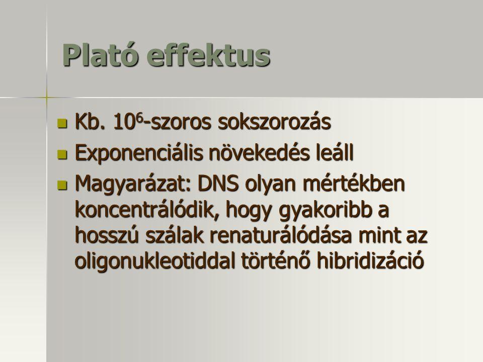Plató effektus Kb. 10 6 -szoros sokszorozás Kb. 10 6 -szoros sokszorozás Exponenciális növekedés leáll Exponenciális növekedés leáll Magyarázat: DNS o