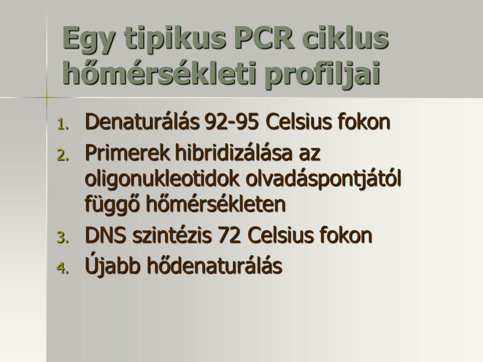 Egy tipikus PCR ciklus hőmérsékleti profiljai 1. Denaturálás 92-95 Celsius fokon 2. Primerek hibridizálása az oligonukleotidok olvadáspontjától függő