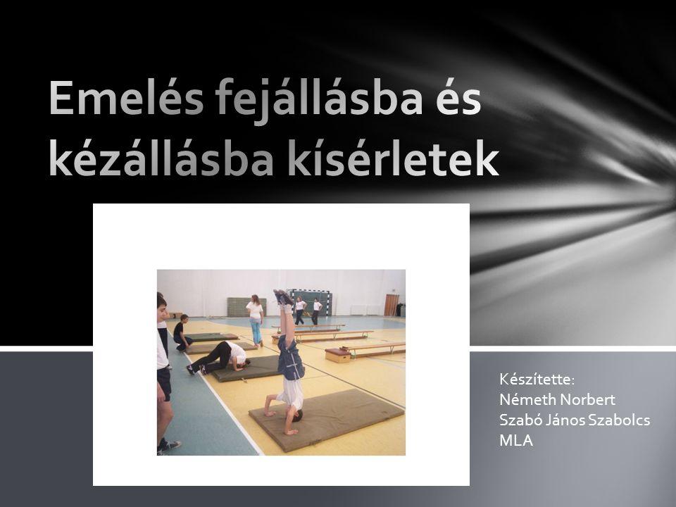 Készítette: Németh Norbert Szabó János Szabolcs MLA