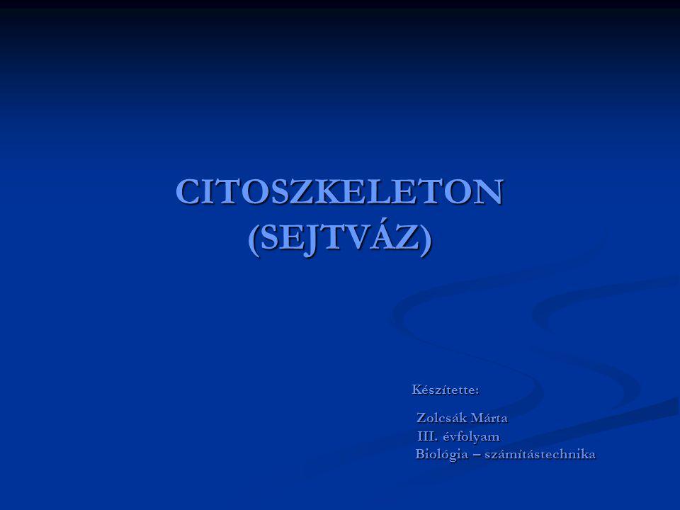 CITOSZKELETON (SEJTVÁZ) Készítette: Készítette: Zolcsák Márta Zolcsák Márta III. évfolyam III. évfolyam Biológia – számítástechnika Biológia – számítá