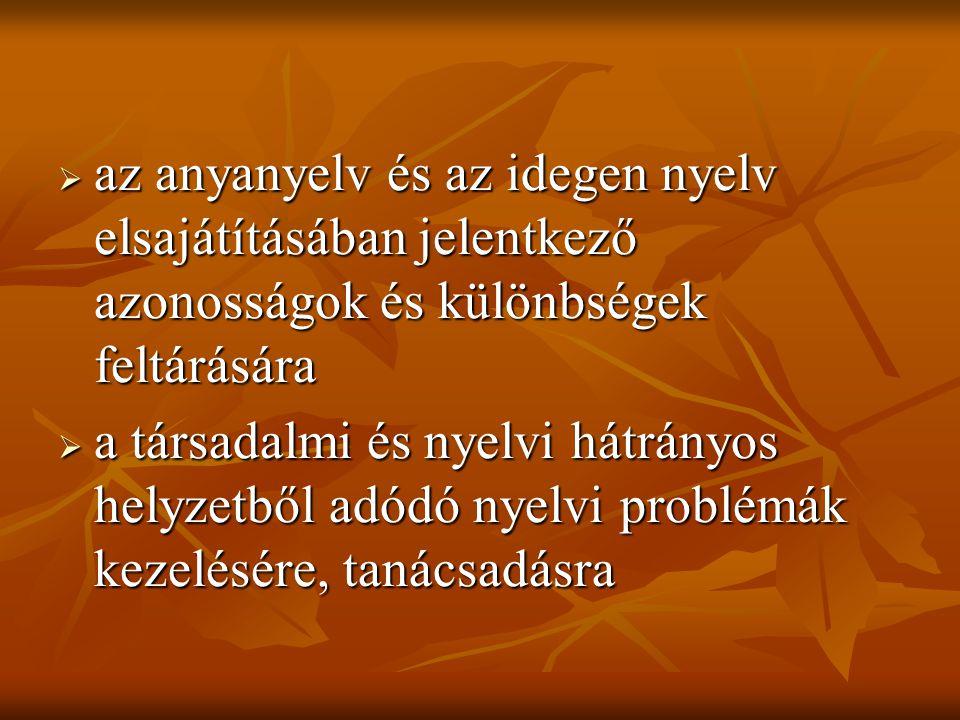  az anyanyelv és az idegen nyelv elsajátításában jelentkező azonosságok és különbségek feltárására  a társadalmi és nyelvi hátrányos helyzetből adódó nyelvi problémák kezelésére, tanácsadásra