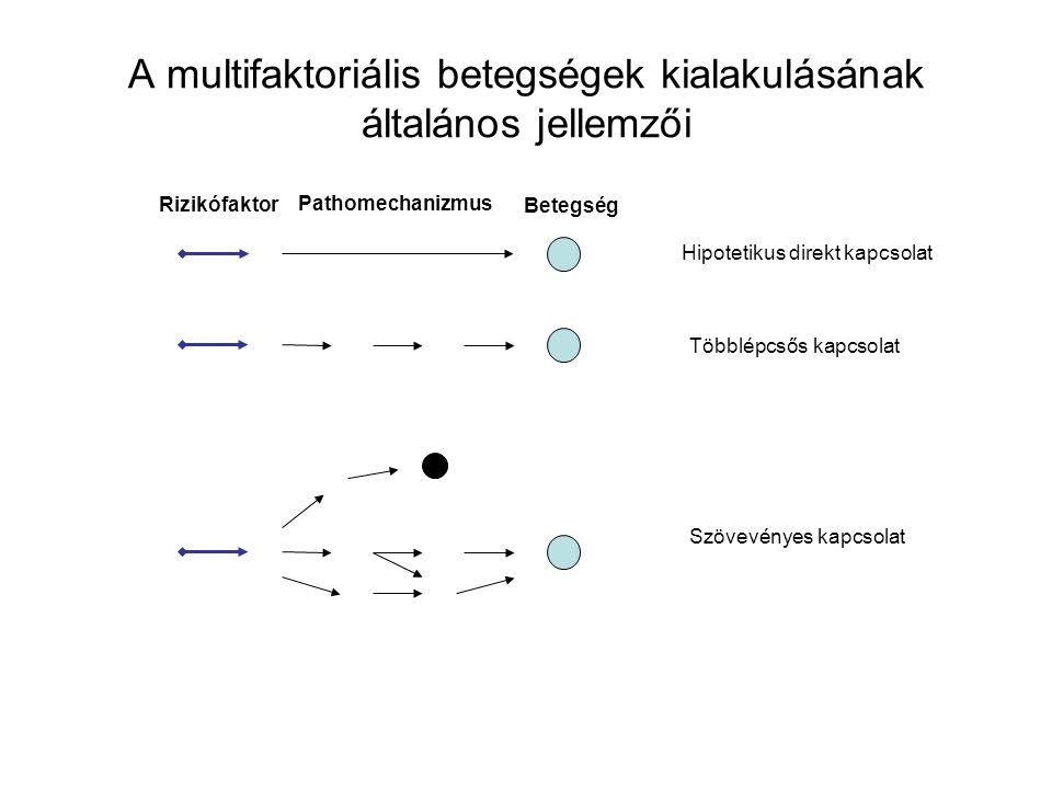 Rizikófaktor Pathomechanizmus Betegség Hipotetikus direkt kapcsolat Többlépcsős kapcsolat Szövevényes kapcsolat A multifaktoriális betegségek kialakul