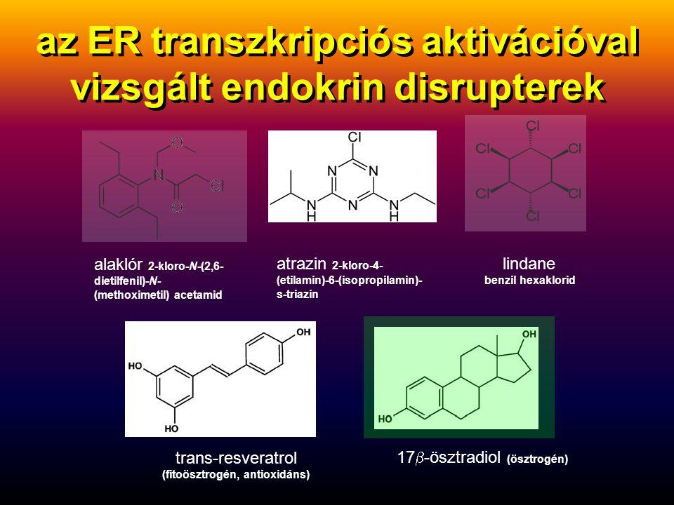 ösztrogén + xenoösztrogén fitoösztrogén inaktív ER monomer aktív ER dimer transzkripciós faktor ösztrogén receptor (ER): sejtmagi fehérje DNS génátírás (transzkripció) Ps2 mRNS