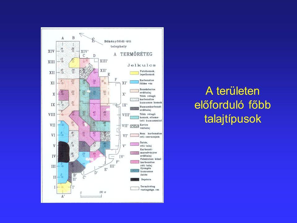 Tényfeltárás  talajvíz mintavételezésére alkalmas megfigyelő kutak  hatósági kötelezés a károsodás megszüntetésére  talajcsere Tanúoszlop