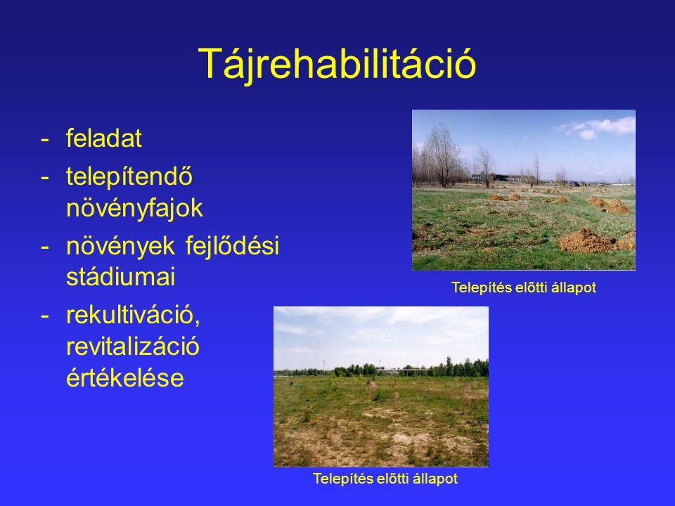 Tájrehabilitáció -feladat -telepítendő növényfajok -növények fejlődési stádiumai -rekultiváció, revitalizáció értékelése Telepítés előtti állapot