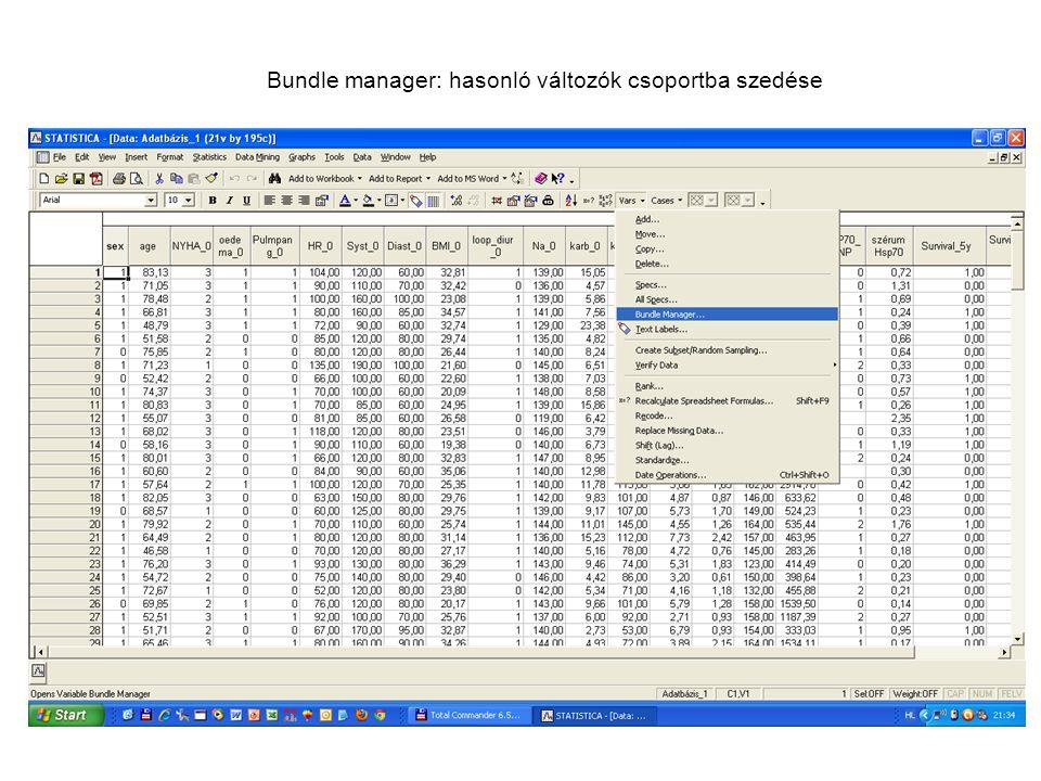 Bundle manager: hasonló változók csoportba szedése