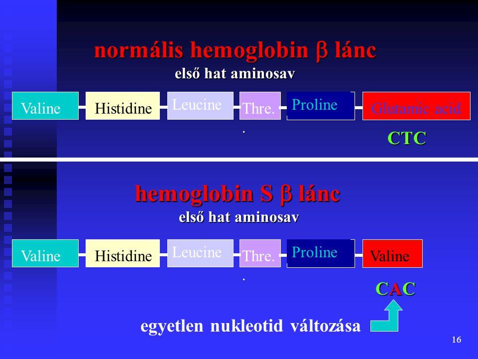 17 sarlósejtes anémia sarlósejtes anémia (Sickle Cell Anemia) a hemoglobint kódoló gén megváltozott a hemoglobint kódoló gén megváltozott