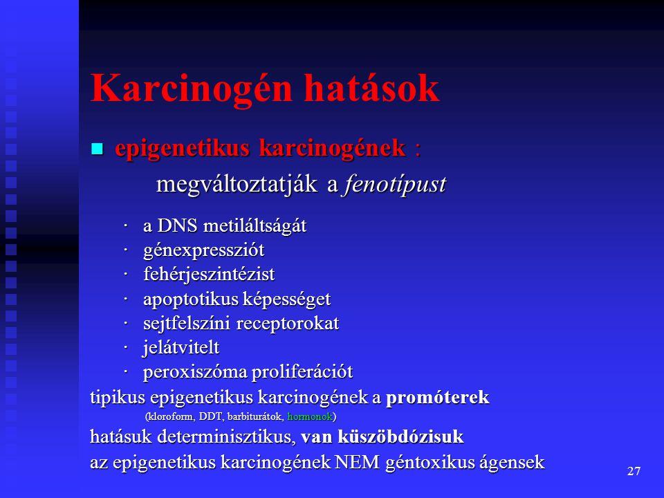 28 A sejtosztódást gének szabályozzák A sejtosztódást gének szabályozzák A szabályozó gének 4 osztálya: A szabályozó gének 4 osztálya: 1.