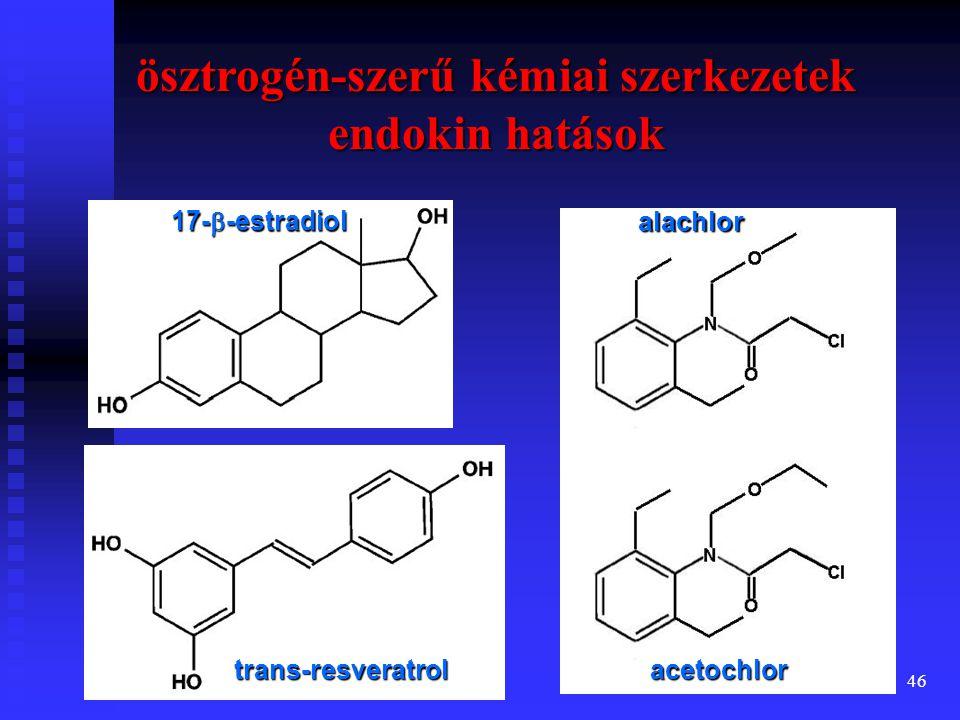 47 ösztrogén + xenoösztrogén fitoösztrogén inaktív ER monomer aktív ER dimer transzkripciós faktor ösztrogén receptor (ER): sejtmagi fehérje DNS génátírás (transzkripció) mRNS NLS