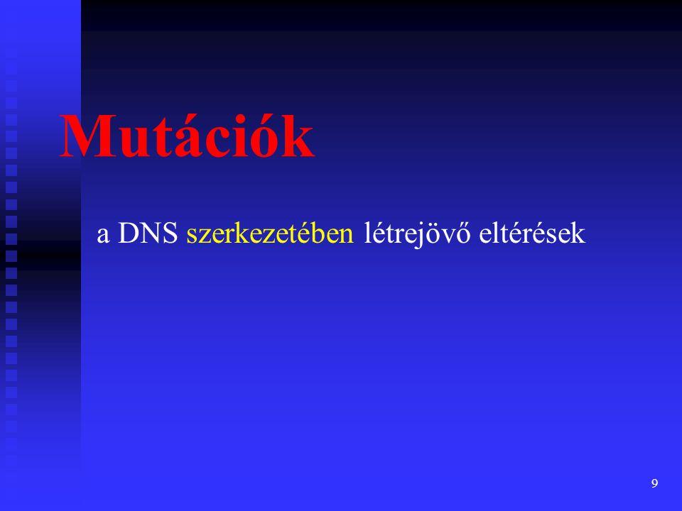 10 A mutáció szintjei molekuláris szint (mutációk) molekuláris szint (mutációk)  nukleotid csere  nukleotid deléció (törlés, kiesés)  nukleotid inzerció (behelyeződés) kromoszóma szint (klasztogén változások) kromoszóma szint (klasztogén változások)  szerkezeti változás  kromoszóma számbeli változás