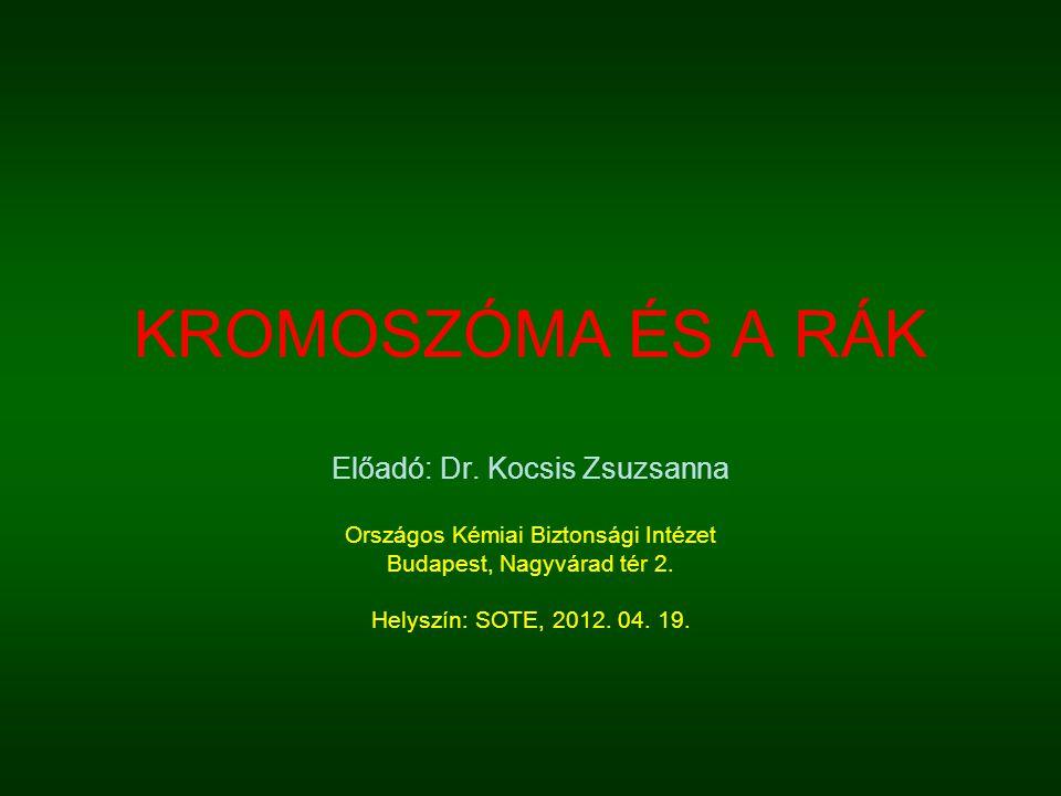 KROMOSZÓMA ÉS A RÁK Előadó: Dr. Kocsis Zsuzsanna Országos Kémiai Biztonsági Intézet Budapest, Nagyvárad tér 2. Helyszín: SOTE, 2012. 04. 19.