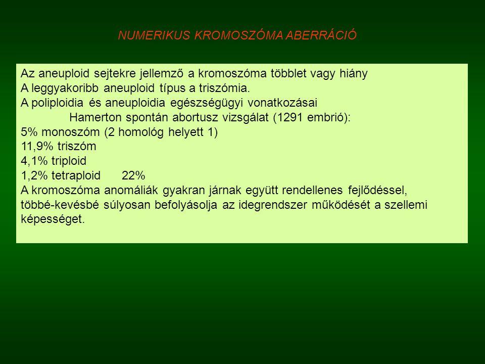 Az aneuploid sejtekre jellemző a kromoszóma többlet vagy hiány A leggyakoribb aneuploid típus a triszómia. A poliploidia és aneuploidia egészségügyi v