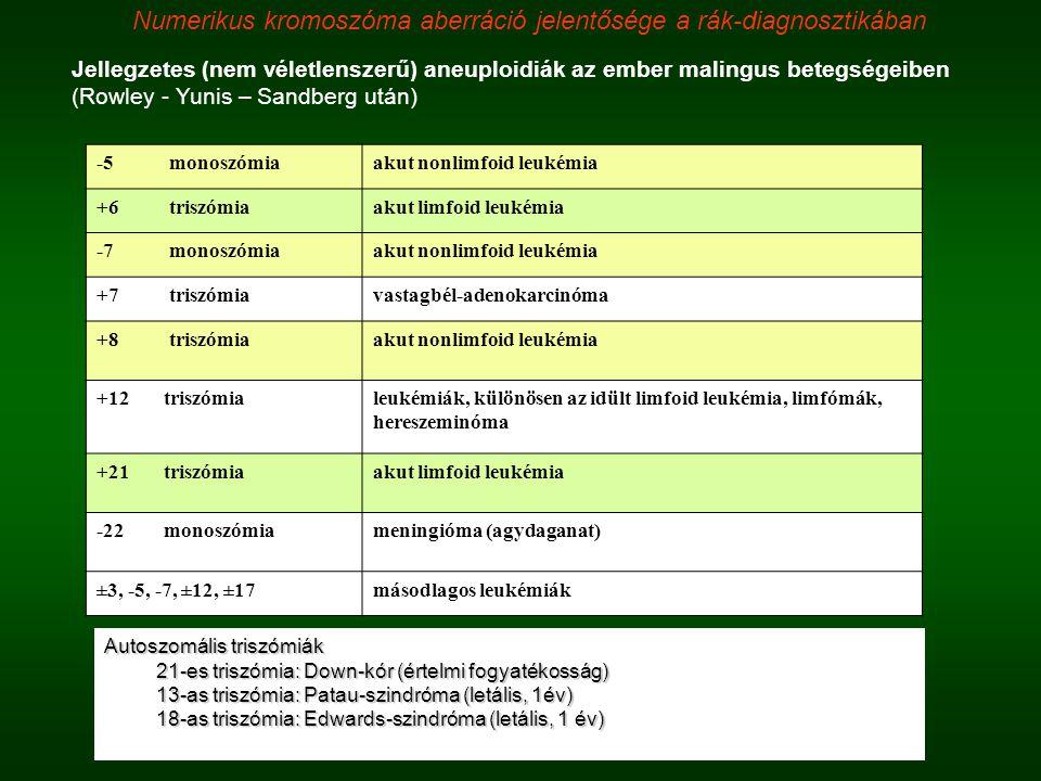 Jellegzetes (nem véletlenszerű) aneuploidiák az ember malingus betegségeiben (Rowley - Yunis – Sandberg után) -5 monoszómiaakut nonlimfoid leukémia +6
