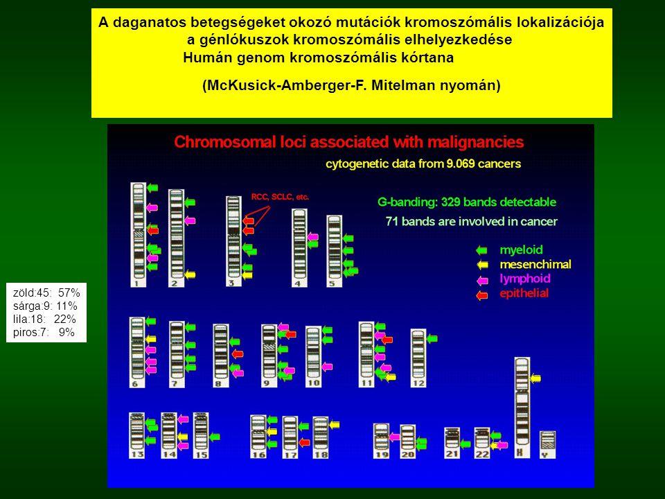 A daganatos betegségeket okozó mutációk kromoszómális lokalizációja a génlókuszok kromoszómális elhelyezkedése Humán genom kromoszómális kórtana (McKu