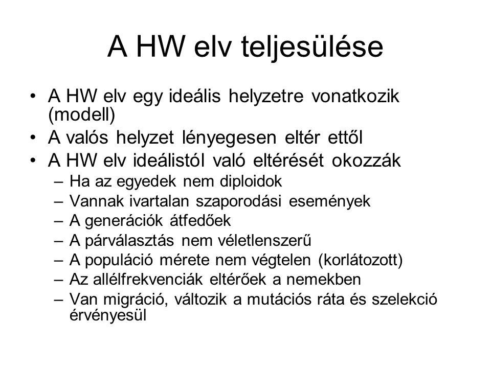 A HW elv teljesülése A HW elv egy ideális helyzetre vonatkozik (modell) A valós helyzet lényegesen eltér ettől A HW elv ideálistól való eltérését okoz