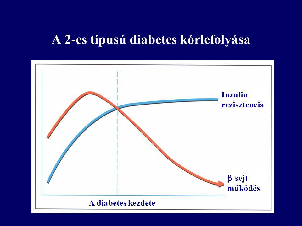 Inzulin rezisztencia  -sejt müködés A diabetes kezdete