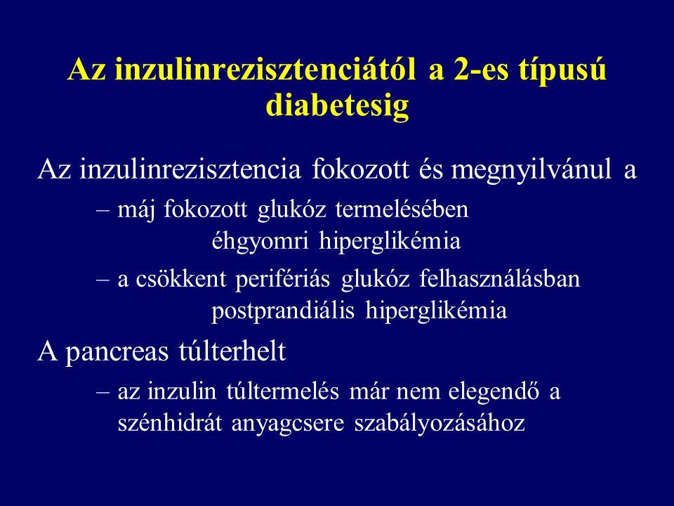 Az inzulinrezisztenciától a 2-es típusú diabetesig Az inzulinrezisztencia fokozott és megnyilvánul a –máj fokozott glukóz termelésében éhgyomri hiperg