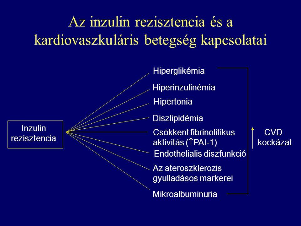 CVD kockázat Hiperglikémia Hiperinzulinémia Hipertonia Diszlipidémia Csökkent fibrinolitikus aktivitás (  PAI-1) Endothelialis diszfunkció Az aterosz