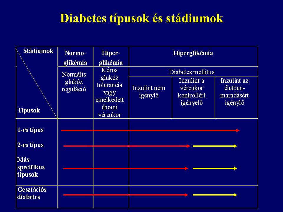 A diabetes fő típusai 1-es típus (IDDM)2-es típus (NIDDM) EpidemiologiaRendszerint sovány, fiatal, többnyire európai Többnyire idősebb, túlsúlyos, minden rassznál megtalálható Genetikai vonatkozások Nem jellemző az öröklődés Genetikailag meghatározott PatologiaTöbbnyire autoimmun eredetű Nem autoimmun KlinikumInzulintermelés hiánya, mindig inzulint igényel Inzulin rezisztencia, részben inzulin szekréciós zavar