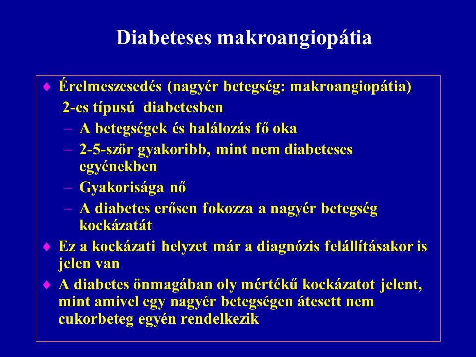  Érelmeszesedés (nagyér betegség: makroangiopátia) 2-es típusú diabetesben  A betegségek és halálozás fő oka  2-5-ször gyakoribb, mint nem diabetes