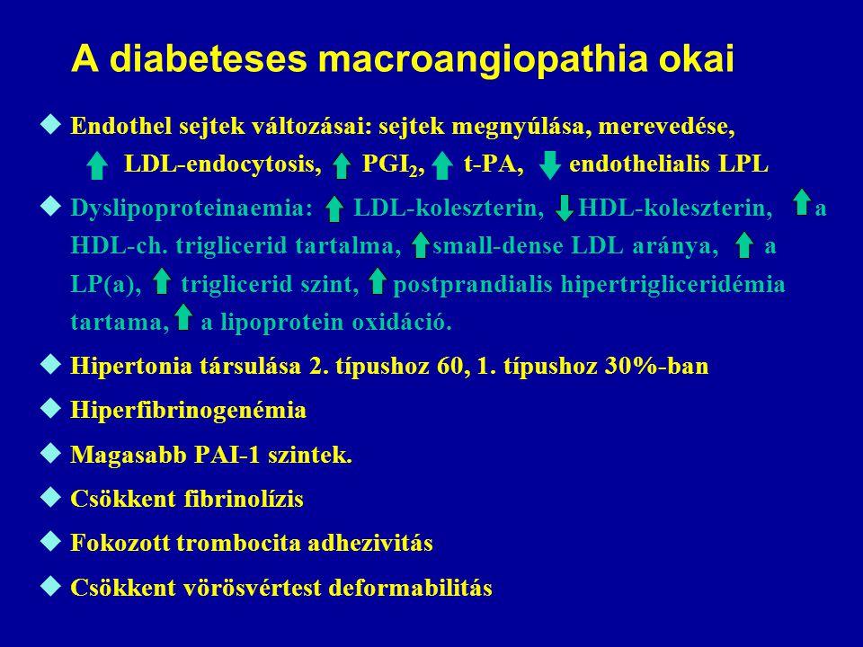A diabeteses macroangiopathia okai  Endothel sejtek változásai: sejtek megnyúlása, merevedése, LDL-endocytosis, PGI 2, t-PA, endothelialis LPL  Dysl