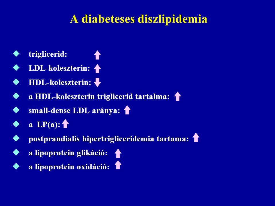 0 20 40 60 80 100 120 140 160 >7,2 <4,64,6-5,15,2-5,7 5,8-6,26,3-6,76,8-7,2 Szérum összkoleszterin szintek (mmol/) 10.000 életévre számítva Adaptálva: Stamler J et al, Diabetes Care, 1993 Diabetes nélkül Diabetes mellett Az életkorhoz illesztett szív- érendszeri halálozási arány a szérum koleszterin szintek szerinti megoszlásban fériak és nők között diabetesszel és diabetes nélkül ( MRFIT Study)