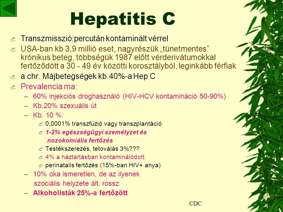 """Hepatitis C  Transzmisszió:percután kontaminált vérrel  USA-ban kb 3,9 millió eset, nagyrészük """"tünetmentes krónikus beteg, többségük 1987 előtt vérderivátumokkal fertőződött a 30 - 49 év közötti korosztályból, leginkább férfiak  a chr."""