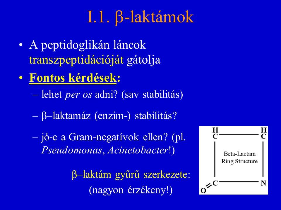 I.1.  -laktámok A peptidoglikán láncok transzpeptidációját gátolja Fontos kérdések: –lehet per os adni? (sav stabilitás) –β–laktamáz (enzim-) stabili