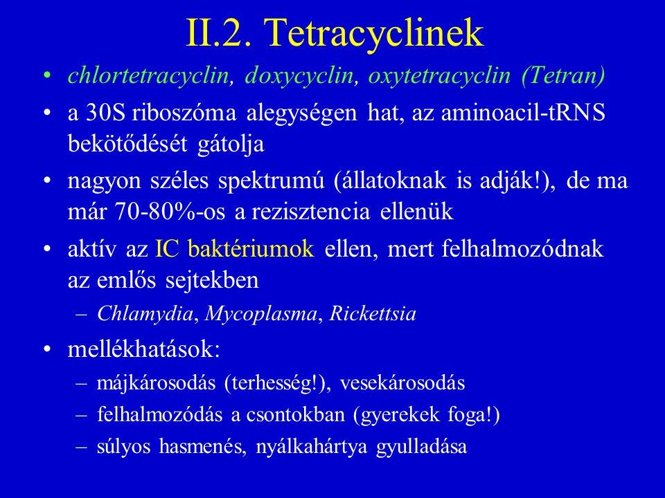 II.2. Tetracyclinek chlortetracyclin, doxycyclin, oxytetracyclin (Tetran) a 30S riboszóma alegységen hat, az aminoacil-tRNS bekötődését gátolja nagyon