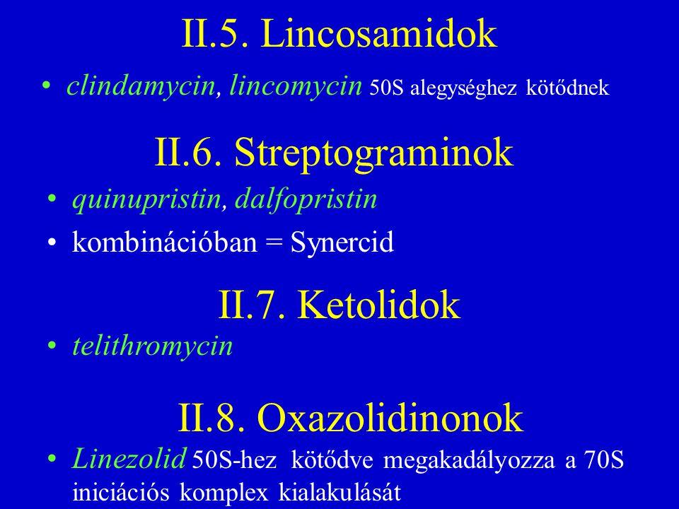 II.5. Lincosamidok quinupristin, dalfopristin kombinációban = Synercid II.6. Streptograminok II.7. Ketolidok II.8. Oxazolidinonok clindamycin, lincomy